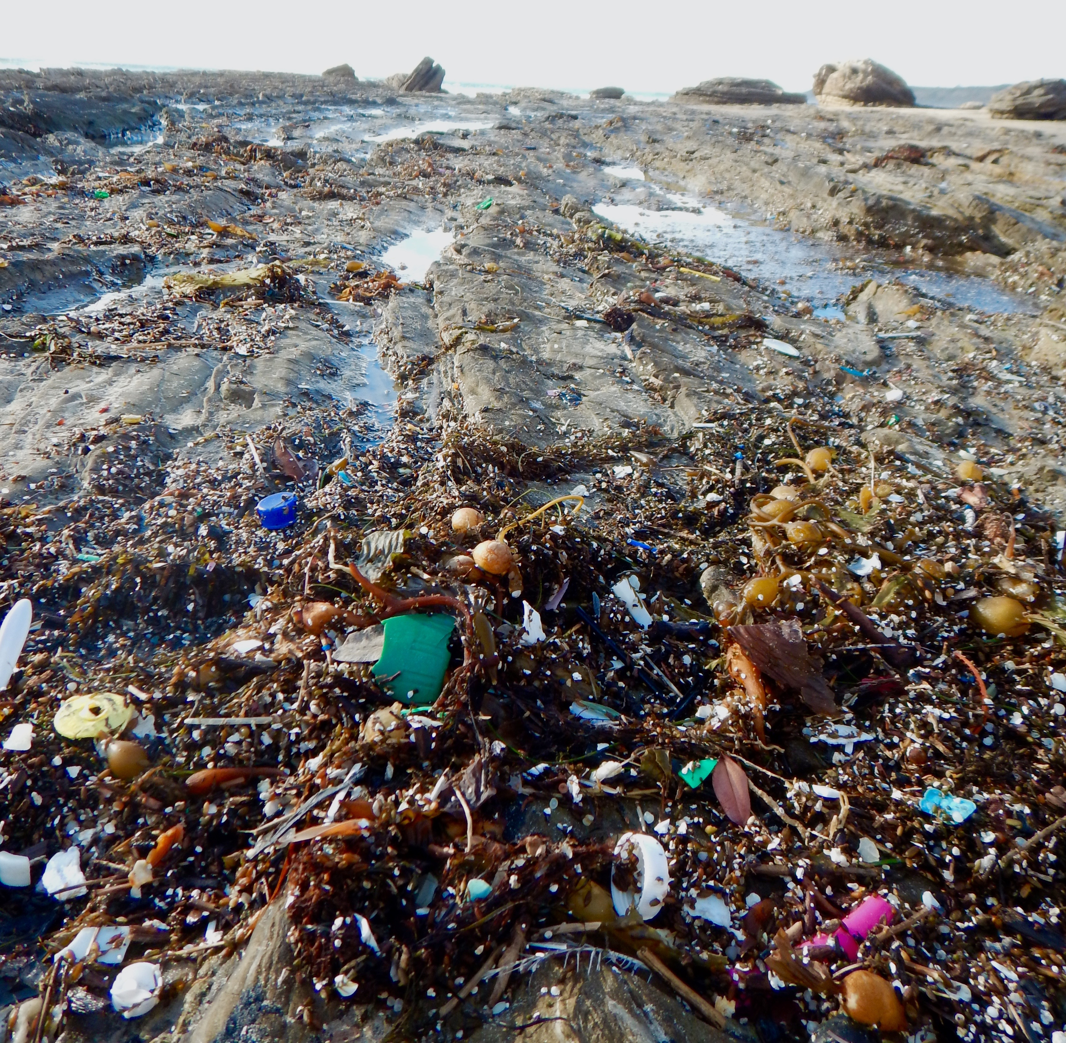 french essay of pollution in oceans The ocean's pollution problem the effects of ocean pollution on the environment essay - our oceans take a large beating every day by the extremely large amount.