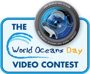 World Oceans Day Video Contest Winners