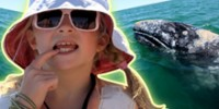 The Reel: Bella and the Whales